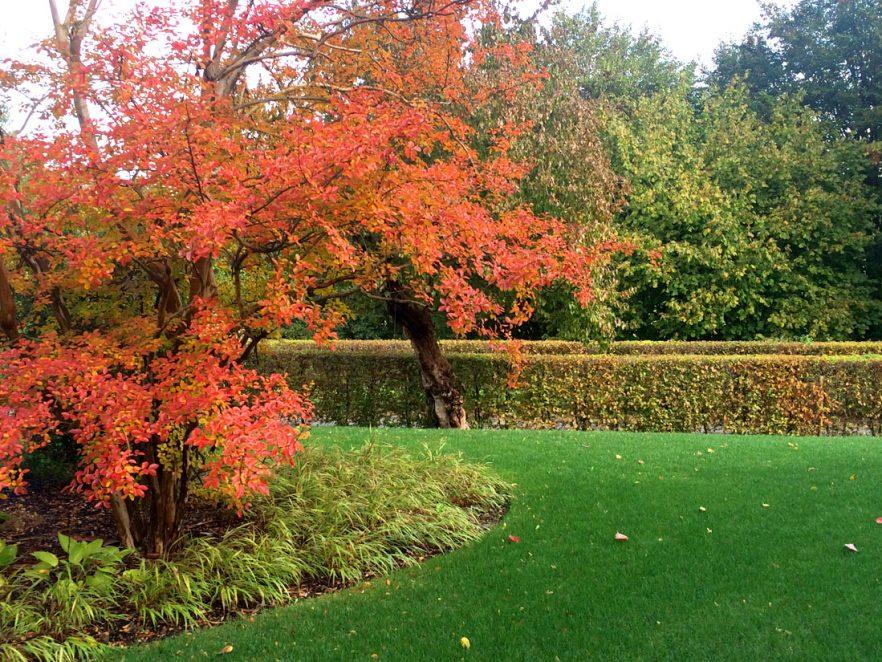 giardino-castelcucco