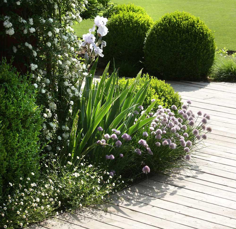 home-realizzazione-giardini-treviso