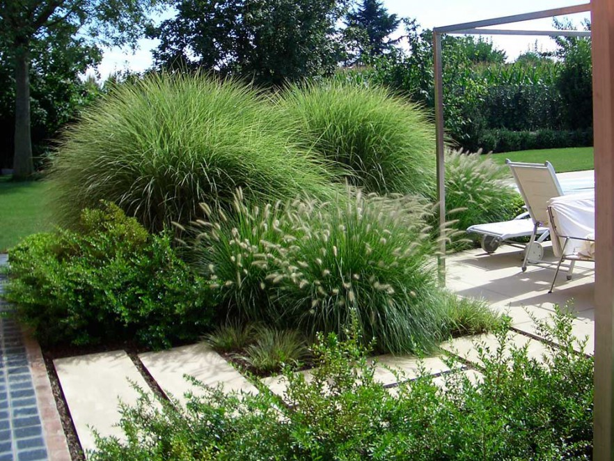 realizzazione-giardino-padova
