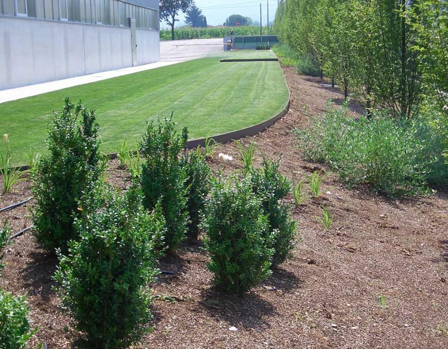 realizzazione-giardino-treviso