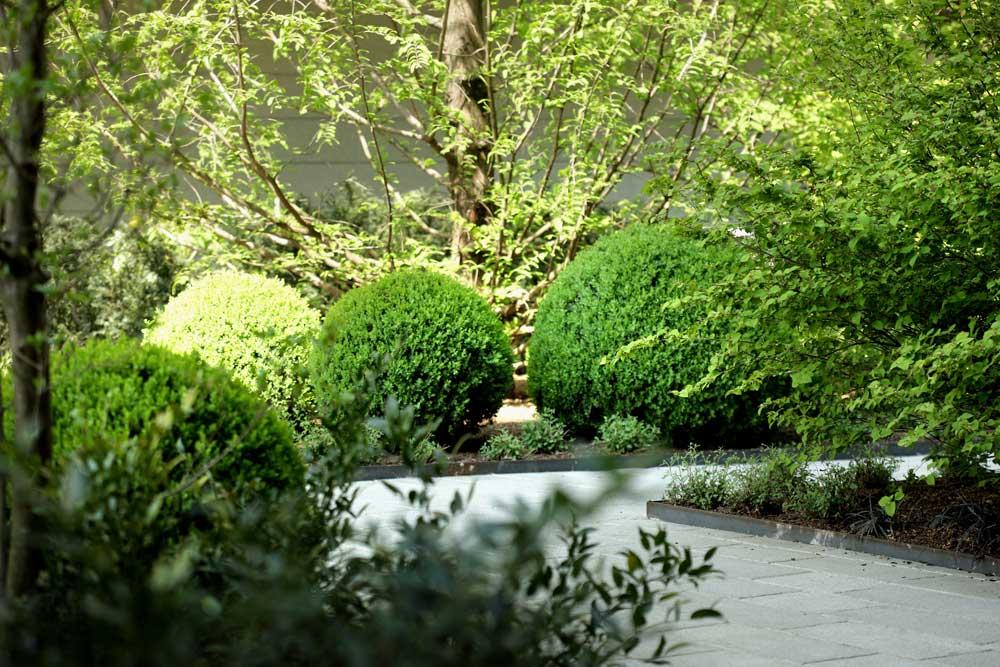 realizzazione-giardino-trezzano